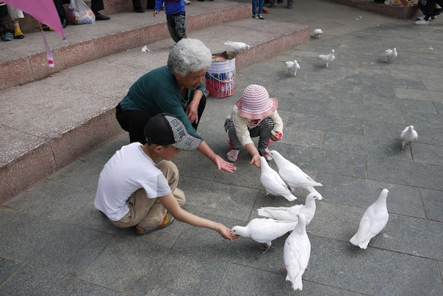 two children and an older woman feeding pigeons