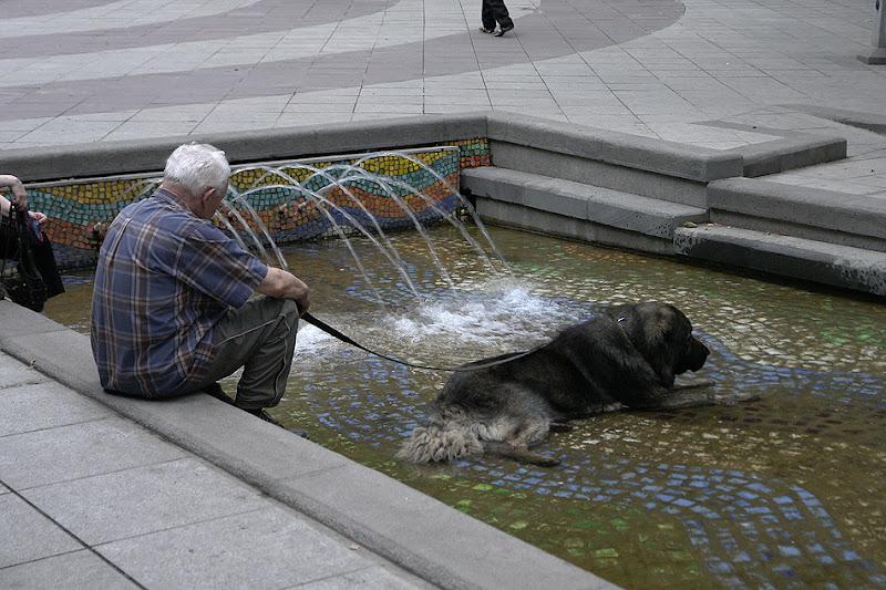 Жара в Тбилиси