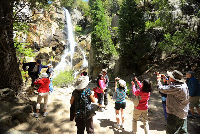 KM San Jose thăm Sequoia & Kings Canyon h20