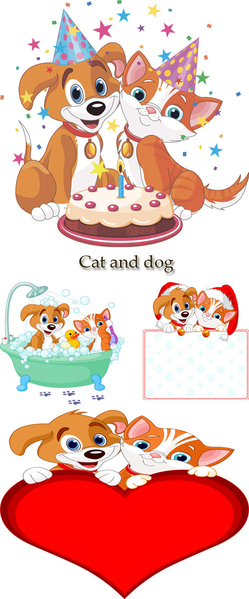 Stock: Cat and dog