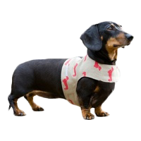 Luxury Puppy Harnesses