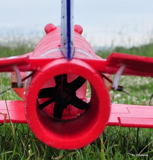 red arrow hawk DSC_2211