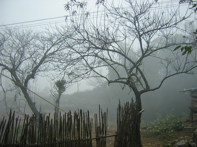 Sương mù, mưa bụi khiến khung cảnh ảo mộng và thêm lãng mạn
