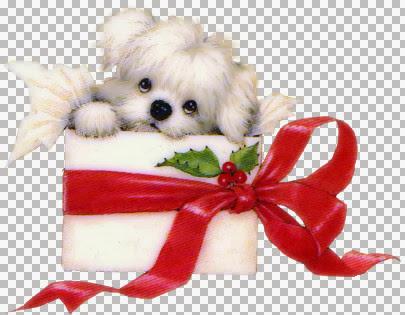 CHRISTMAS_128 (2).jpg