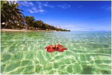 Fun, Free Fijian Activities