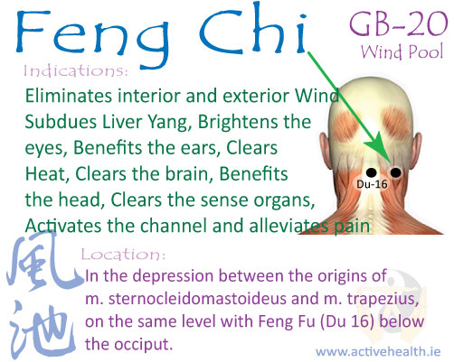 Feng Fu Reviews