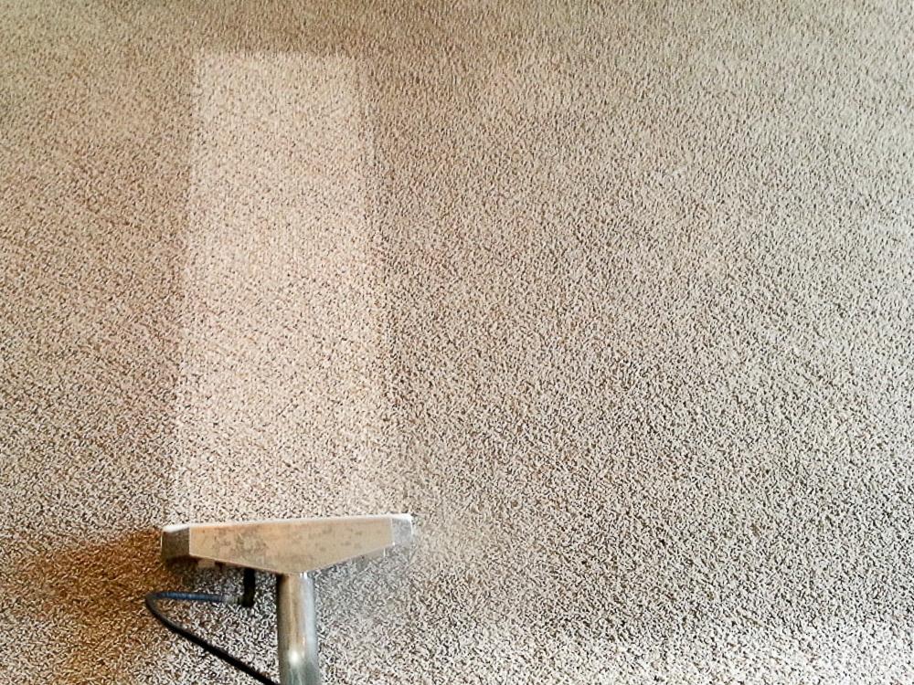 carpet cleaners lebanon mo