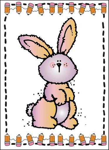 dji_rabbit.jpg