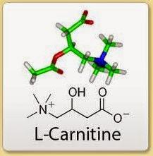 l-carnitin- tot-trong-dieu-trị-tim-mach
