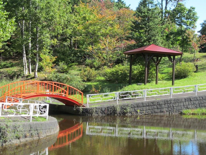 金比羅公園の池と周辺