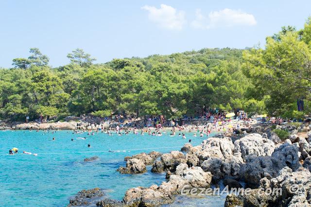 çam ağaçları ile çevrili İncekum plajı, Marmaris Muğla