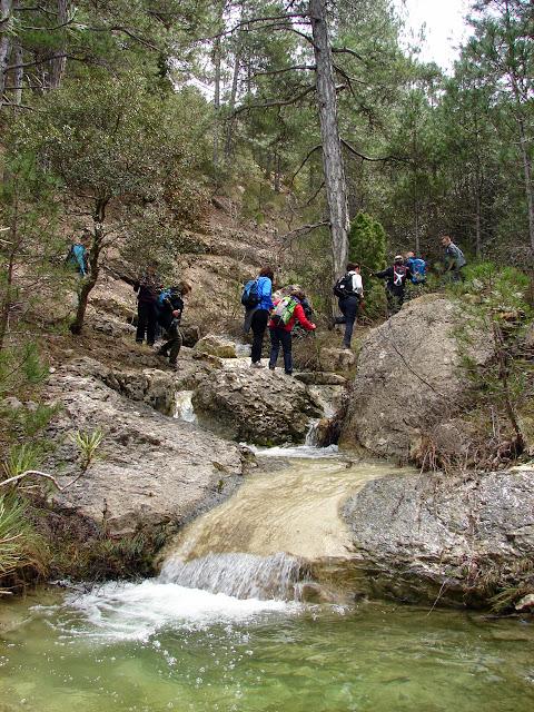 Senderismo - Puntasa - Cascadas - Cuevas y Árboles