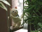 ガーデンアクセサリー:猫シリーズ03