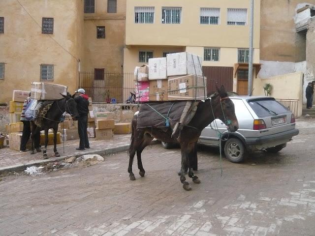 O meu Marrocos Abril 2012 L1010298