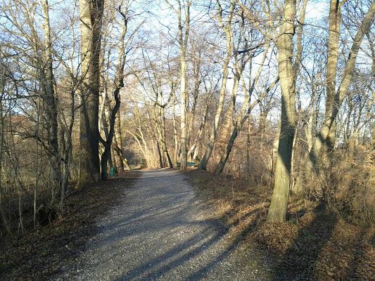 Pasinger Stadtpark