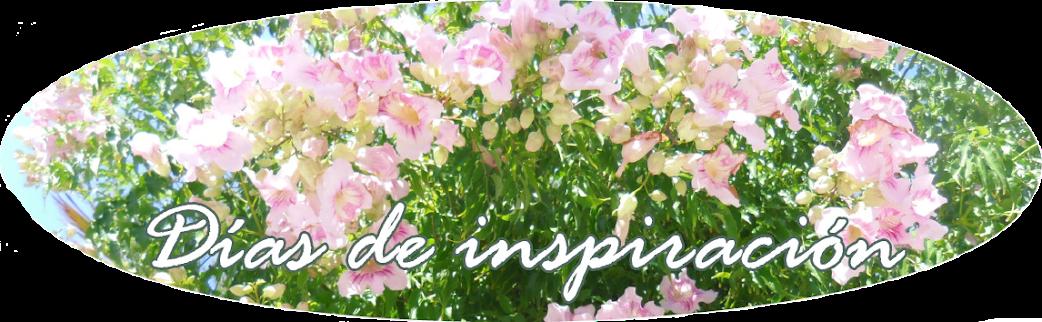 Días de inspiración