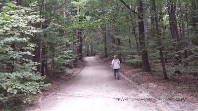 wejście na Ślężę żółtym szlakiem