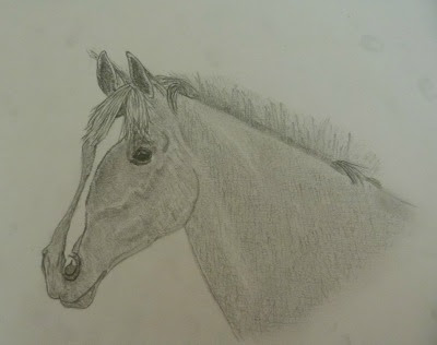 Ongebruikt INFO] Resultaat topic paarden tekenen #6 • Bokt.nl YG-74