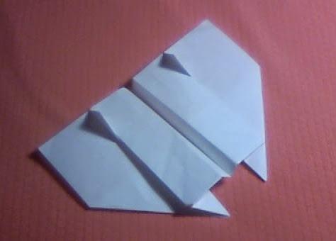 Wing 56