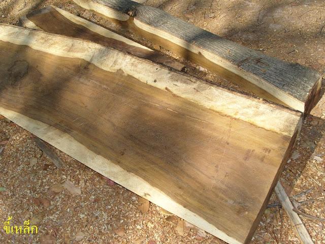 ไม้ ลักษณะเนื้อไม้ แผ่นไม้ต่างๆ