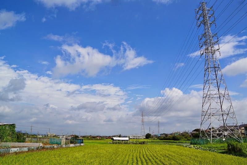 相武台下駅 写真2