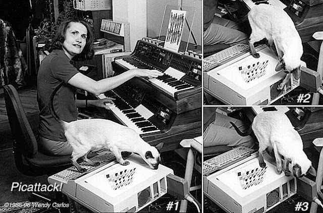 Wendy Carlos and some cats 1