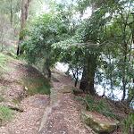 Berowra Track near Apple Tree Bay (118264)