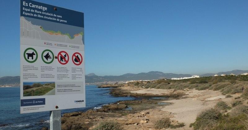 Playa para perros de es carnatge en mallorca