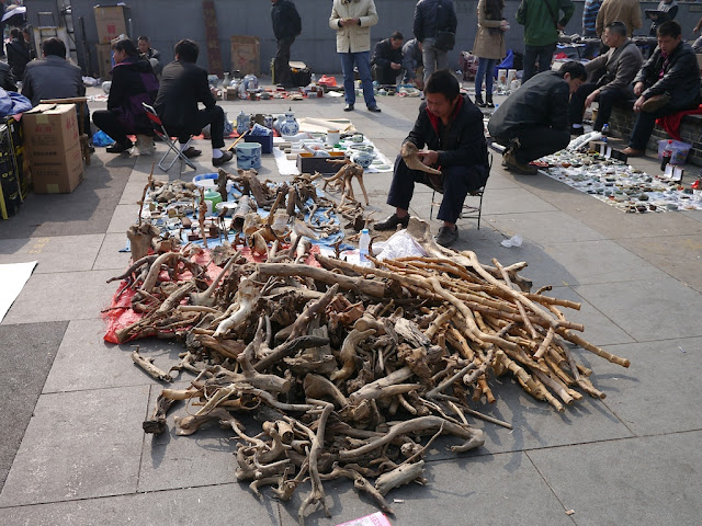 man selling tree branches and bamboo at an outdoor antique market in Changsha, China