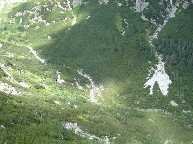Dolina Roztoki, okolice Siklawy (foto: Tatrografia)