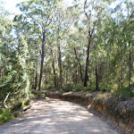 Walking along the Sublime Point trail (317210)