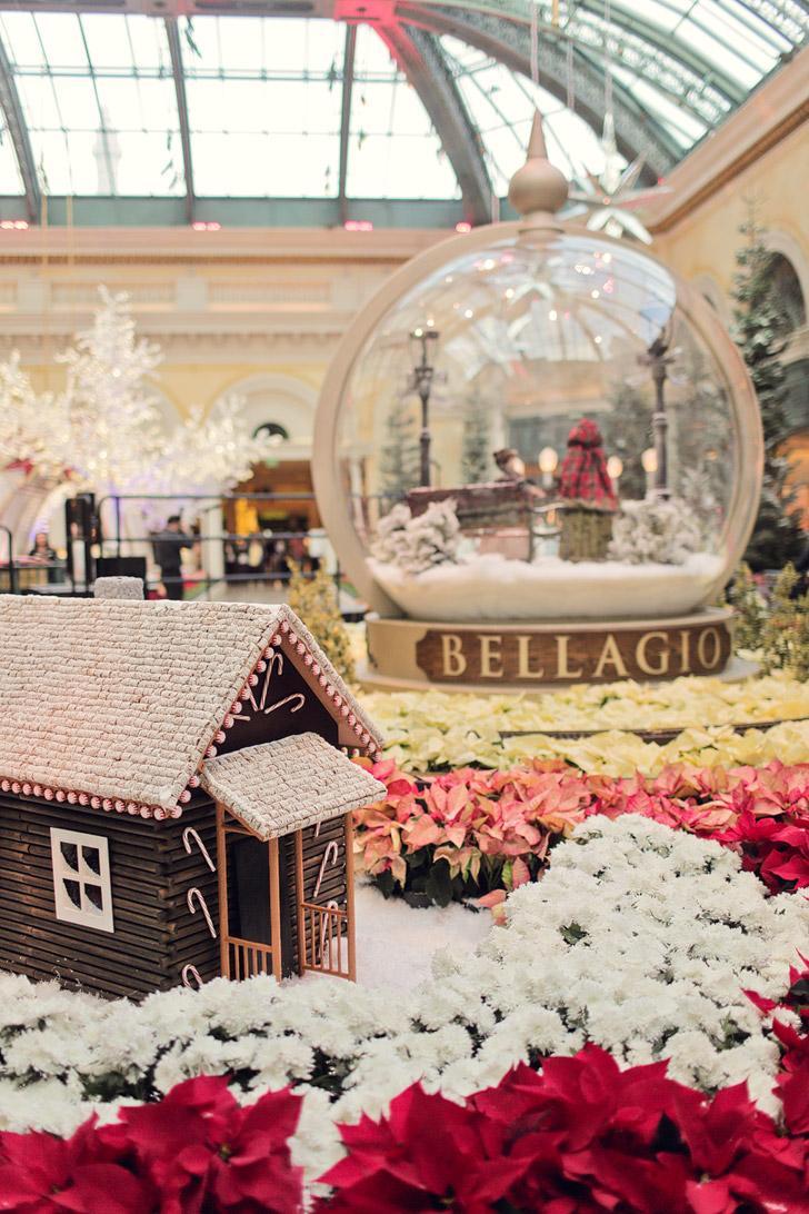Bellagio Botanical Gardens (25 Free Things to do in Las Vegas).