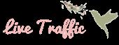 Live Traffic Feed