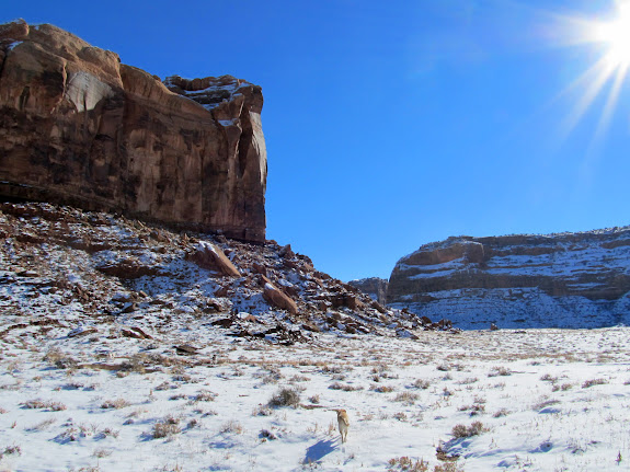 Shortcut between Dubinky Wash and Hell Roaring Canyon