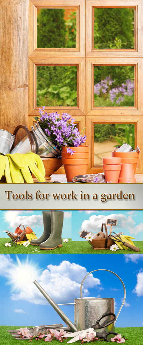 Stock Photo: Tools for work in a garden and rubber boots