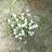 bianca Oney avatar image