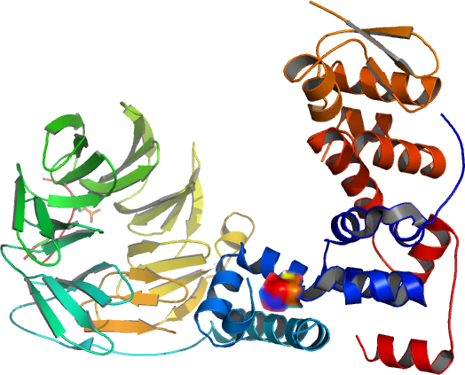 Structure Of A<br /> Beta-Trcp1-Skp1-Beta-Catenin Complex: Destruction Motif