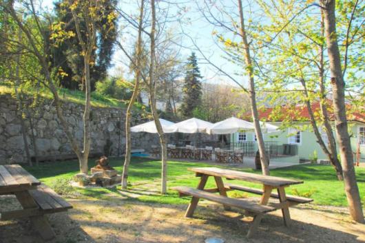 Vindimas no Douro: Das tabernas aos restaurantes vínicos