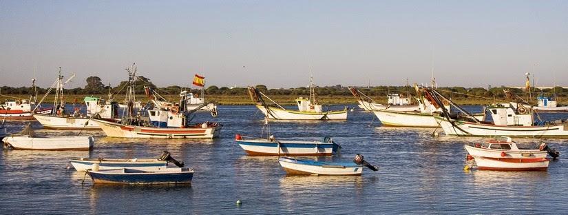 Barcos pesqueros en la ría de Punta Umbría