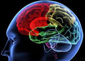 Solusi Sehat Pengobatan Kelumpuhan Otak