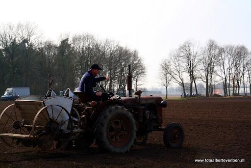 Historische ploegdag   Westerbeek 04-03-2012 (10).JPG