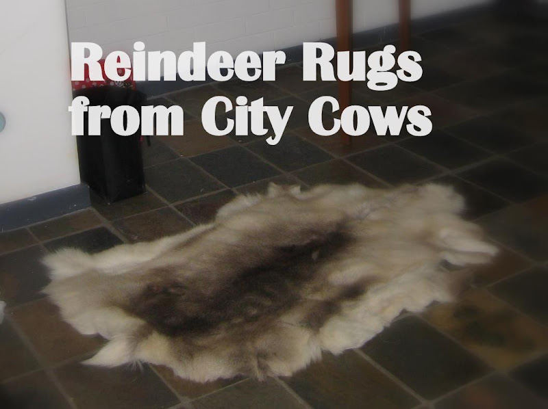Reindeer Hides from City Cows – we're not just for Cowide rugs !