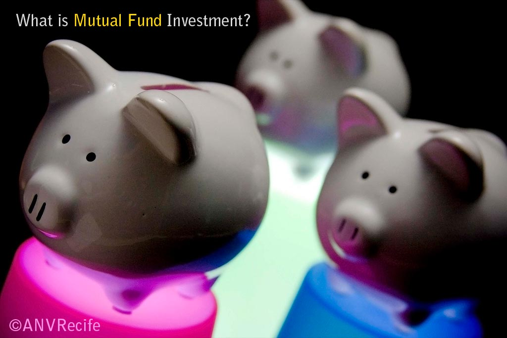 what is mutual fund investment