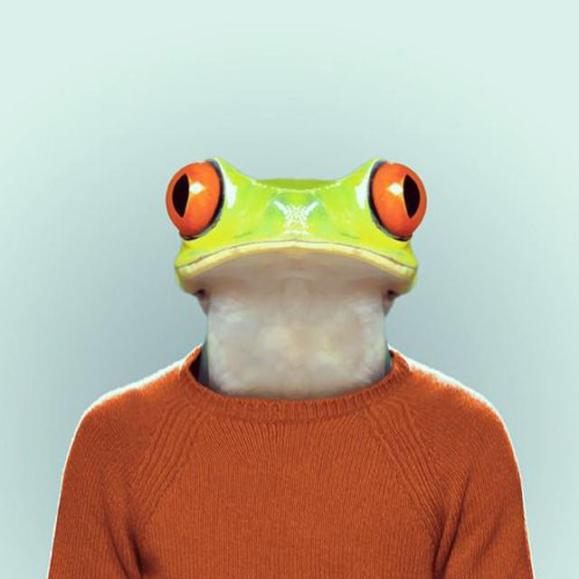 *Zoo Portraits動物時尚秀:正經八百時裝篇! 15