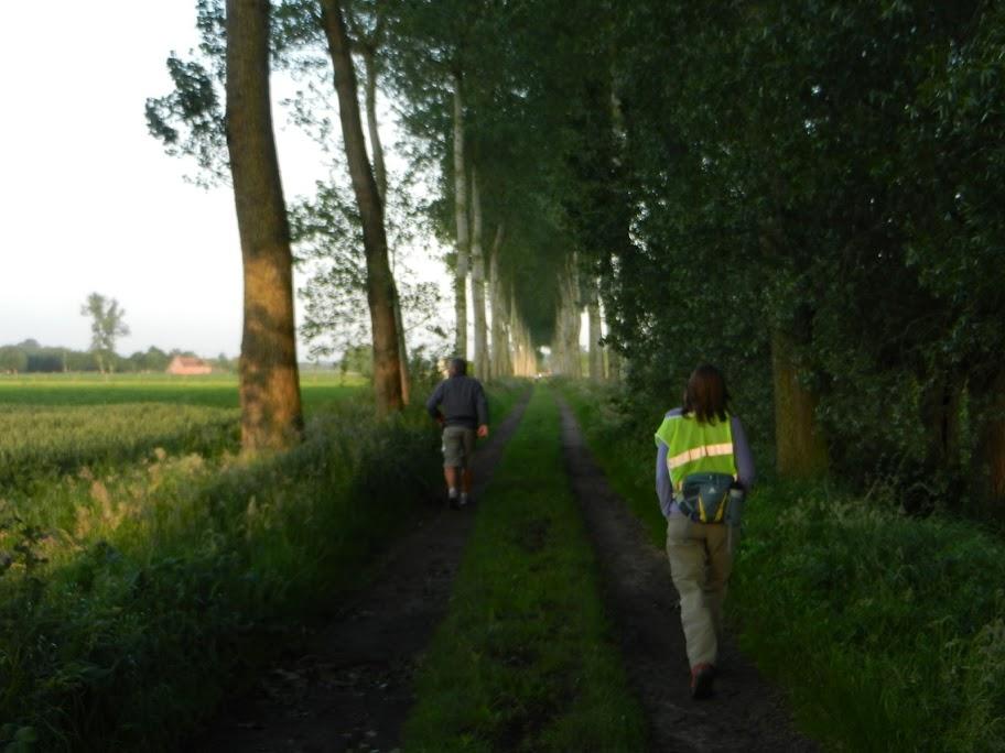 """100 Km """"Nuit des Flandres"""" (Torhout, B): 21-22/6/2013 Torhout%252C%25202223-06-12%2520123"""