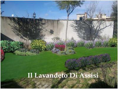 giardini idee pratiche manutenzione : Progetti giardini online gratis Progetti giardini privati, progetti ...