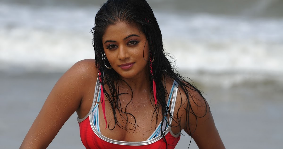 masturbation-priyamani-funking-through