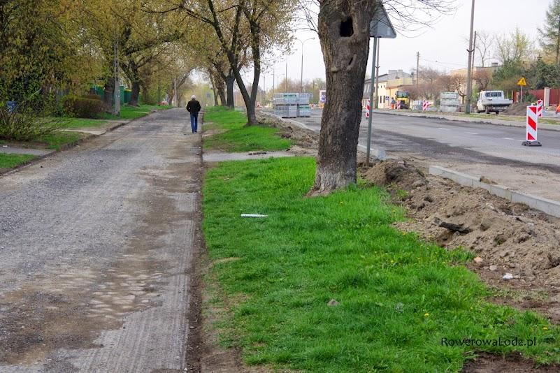 Droga dla rowerów będzie ukryta pod konarami starszych drzew