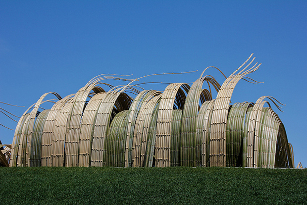 Bamboo Installations at Denver Botanic Gardens