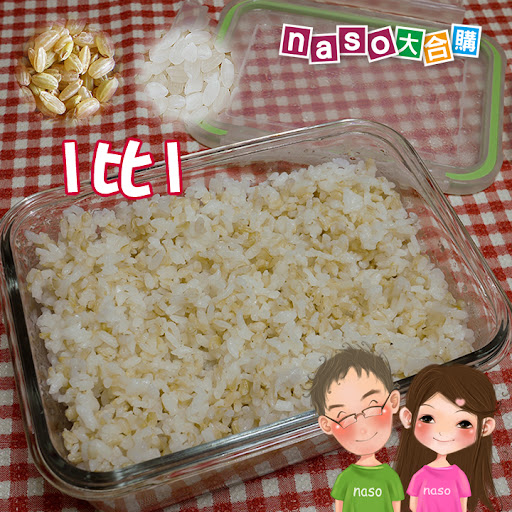 【naso食譜】紅燒黃豆控肉 (搭配自製豆芽,讚讚讚!)